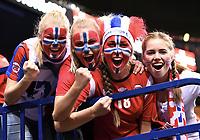 Håndball illustrasjon , norske fans , fan , tilskuere , publikum , ansiktsmaling )Hamburg, 17.12.2017, Handball, IHF Frauen-WM 2017 in Deutschland, Finale, Frankreich - Norwegen 23:21Frankrike - Norge<br /> Norway only