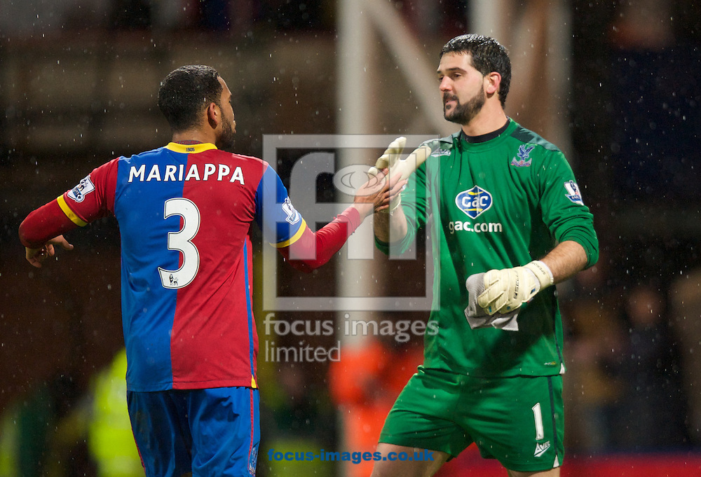 Picture by Alan Stanford/Focus Images Ltd +44 7915 056117<br /> 28/01/2014<br /> Adrian Mariappa of Crystal Palace and goalkeeper Julian Speroni celebrate their win after the Barclays Premier League match at Selhurst Park, London.