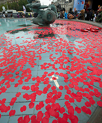 Two minute silence in Trafalgar Square for Armistice Day-. London, United Kingdom. Monday, 11th November 2013. Picture by i-Images