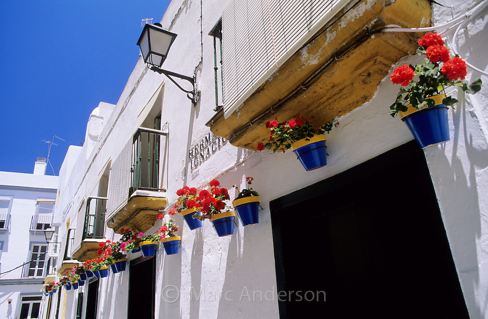 Typical street in Cadiz with flowerpots on the wall, Spain