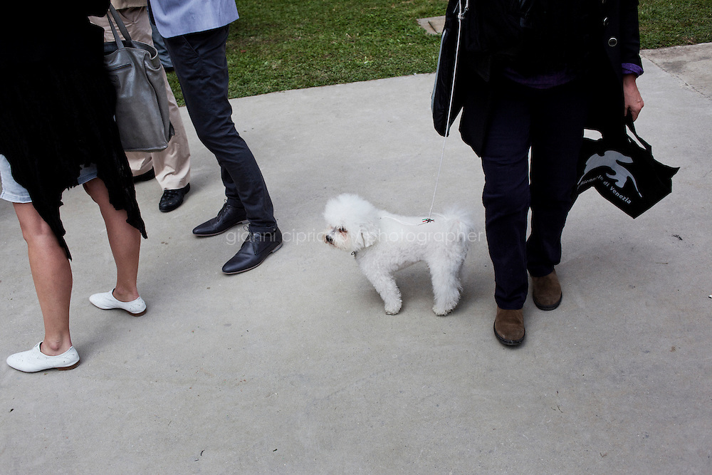 VENICE, ITALY - 30 MAY 2013: Visitors and a white poodle are here  at the inauguration of Italian Pavillon, at the Arsenale in Venice, Italy, on May 30th 2013. <br /> <br /> The Italian Pavilion presents vice versa, an ideal journey through Italian art of today,<br /> an itinerary that tells of identities, history and landscapes - real and imaginary - exploring the complexity and layers that characterize the country's artistic vicissitudes. The Italian Pavillon is curated by Bartolomeo Pietromarchi,<br /> who describes the exhibition as, ?A portrait of recent art, read as an atlas of themes and attitudes in dialogue with the historical legacy and current affairs, with both a local and international dimension. A cross-dialogue of correspondences, derivations and differences between acclaimed maestros and artists of later generations&quot;. The exhibition is divided into seven spaces - six rooms and a garden - that each house<br /> the work of two artists,<br /> who are brought together on the basis of the affinity of their<br /> respective poetics and common interests in themes, ideas and practices.<br /> <br /> The 55th International Art Exhibition of the Venice Biennale takes place in Venice from June 1st to November 24th, 2013 at the Giardini and at the Arsenale as well as in various venues the city. <br /> <br /> Gianni Cipriano for The New York TImes