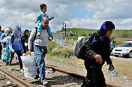 Refugees crossing the border from Serbia into Hungary, along an old railway line, while work continues on a new border fence behind.They are being stopped a kilometer down the line by police, and being held in a field close to the town of Röszke.  The official border reception centres are full and refugees must camp on the ground, dependent on food donated by volunteer groups