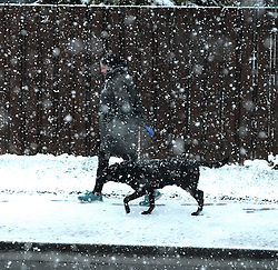 West Lothian Weather, Wednesday 3rd April 2019<br /> <br /> Pictured: A woman walks her dog in the snow which hit West Lothian on Wednesday morning<br /> <br /> Alex Todd   Edinburgh Elite media