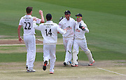 Will Smith is congratulated after running out Luke Wright during the LV County Championship Div 1 match between Sussex County Cricket Club and Hampshire County Cricket Club at the BrightonandHoveJobs.com County Ground, Hove, United Kingdom on 9 June 2015. Photo by Bennett Dean.