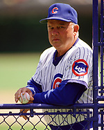 CHICAGO - 1988:  Manager Don Zimmer of the Chicago Cubs looks on during an MLB game at Wrigley Field in Chicago, Illinois during the 1988 season. (Photo by Ron Vesely)  Subject:   Don Zimmer