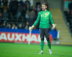 SWANSEA, WALES - Tuesday, March 26, 2013: Croatia's goalkeeper Stipe Pletikosa in action against Wales during the 2014 FIFA World Cup Brazil Qualifying Group A match at the Liberty Stadium. (Pic by David Rawcliffe/Propaganda)
