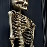 Halloween plastic skeleton decorations on door in Greenwich Village.