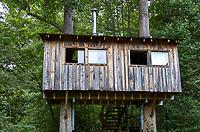 Tree house at Arthur Morgan School near Burnsville, North Carolina. Image taken with a Leica T camera and 35 mm f/1.4 lens.