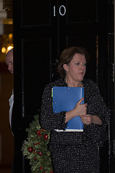 © licensed to London News Pictures. London, UK 17/12/2012. Maria Miller, Secretary of Culture, Media and Sport, leaving Downing Street on 17/12/12 . Photo credit: Tolga Akmen/LNP