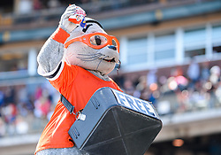 April 8, 2018 - San Francisco, California, U.S. - SAN FRANCISCO, CA - APRIL 08: San Francisco Giants mascot Lou Seal tosses Cracker Jacks to fans during a regular season game between the Los Angeles Dodgers and San Francisco Giants on April 8, 2018, at AT&T Park in San Francisco, CA. (Photo by Stephen Hopson/Icon Sportswire) (Credit Image: © Stephen Hopson/Icon SMI via ZUMA Press)