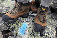 """A detail image of the hiking boots standing over a """"blue blaze"""" used to mark the trail to the summit of Mt Katahdin in Maine.  """"Blue blazes"""" are used throughout the Appalachian Trail to designate alternate routes.  The main pathway is marked with """"white blazes"""".  The group is climbing the mountain to celebrate John Walcott's 60th birthday.  Walcott has been climbing Mt Katahdin, the highest point in Maine and the northern terminus of the Appalachain Trail, since 1976."""