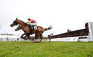Plumpton, UK, 16th January 2017<br /> Paul Moloney and Yourholidayisover clear the final fence to win the 'My Dashboard' On The Timeform App Handicap Chase at Plumpton Racecourse.<br /> &copy; Telephoto Images / Alamy Live News