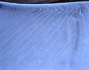 Layers of Ice, Ice, Ice Pattern, Ice Patterns, Ice Layers, Winter, Ice, Snow, Zion, Zion National Park, Utah