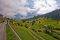 Golzern,  Switzerland, the path to the village.