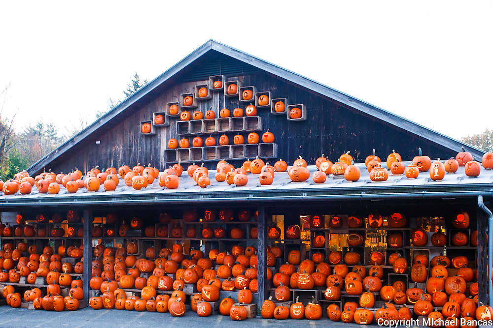Fall and pumpkins in Woodstock New York