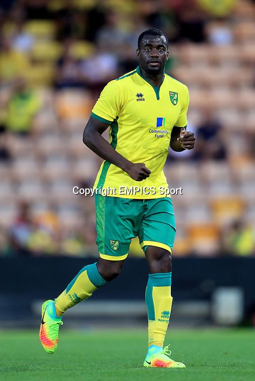 Sebastien Bassong, Norwich City