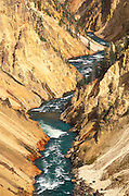The Yellowstone River in the Grand Canyon of the Yellowstone, Yellowstone National Park, Wyoming
