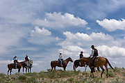 Cowboys and cattle drive guests herd roughly 400 head of  cattle through the sagebrush 100 miles over 5 days into Reno during the annual Reno Rodeo cattle drive which brings the livestock for use in the rodeo into town...***No Model Releases Available***