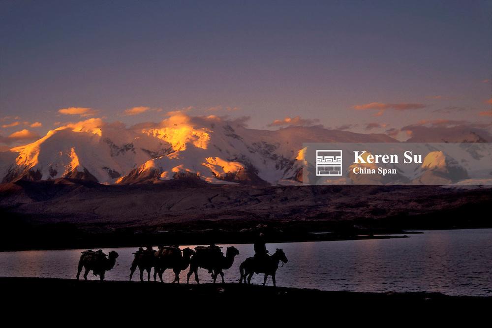 Camel caravan with Karakuli Lake under sunset, Pamir Plateau, Xinjiang Province, Silk Road, China