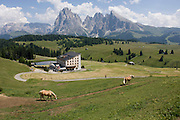 Skiing hotel in summer and horses on the Siusi plateau, above the South Tyrolean town of Ortisei-Sankt Ulrich in the Dolomites, Italy.