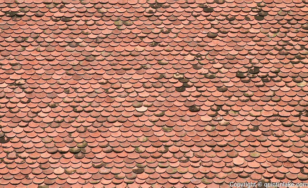 Red tiles, shaped and patterned like fish scales, on the roof of the National.Museum of Cambodia, constructed 1917-24 and inspired by Khmer temple architecture. The roof tiles have sections offset for ventilation, which incidentally provide entry and exit points for bats. For years the building was infested with bats and until 2003 it housed the world's largest bat enclave - numbering two million - inside a man-made structure. Phnom Penh, Cambodia, 2003