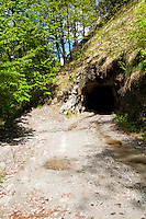 Ticino, Southern Switzerland. Almost hidden entrance to a mining tunnel in the side of a hill.