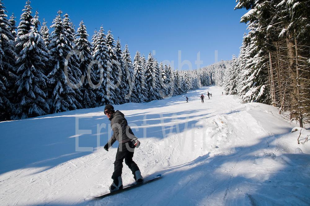 Wurmberg, Skihang, Snowboardfahrer, Wald, Schnee, Winter, Braunlage, Harz, Niedersachsen, Deutschland   Wurmberg, snowboarder, forest, snow, winter, Braunlage, Harz, Lower Saxony, Germany
