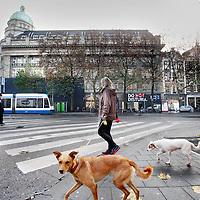 Nederland, Amsterdam , 23 november 2011..Taxistandplaats op het Leidse plein wordt verlegd onm de hoek tegenover het Americain..Foto:Jean-Pierre Jans