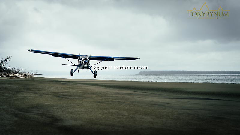 a beaver airplane makes a landing on a sandy beach in alaska