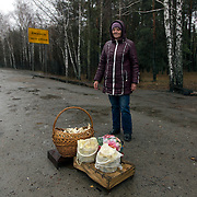 A woman is selling mushrooms in the road from Ivankof to Narodichi. Thousands of people are still highly exposed to radiation, and local people consume homegrown produce.