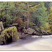 The Hermitage, Dunkeld in Perthshire - a localised beauty spot