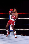 Nov 1980:  Sugar Ray Leonard works out..Mandatory Credit:  Manny Millan/Icon SMI