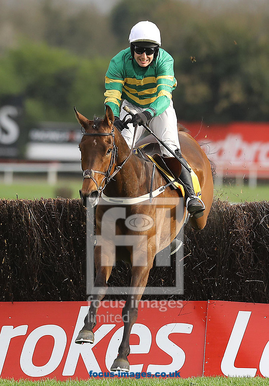 Jody McGarvey on Great Field lands in front and go's on to win the Ryanair Novice 'chase on day three of the 2017 Festival at Punchestown Racecourse, Kildare, Eire.<br /> Picture by Kristian Kane/Focus Images Ltd +44 7814 482222<br /> 27/04/2017