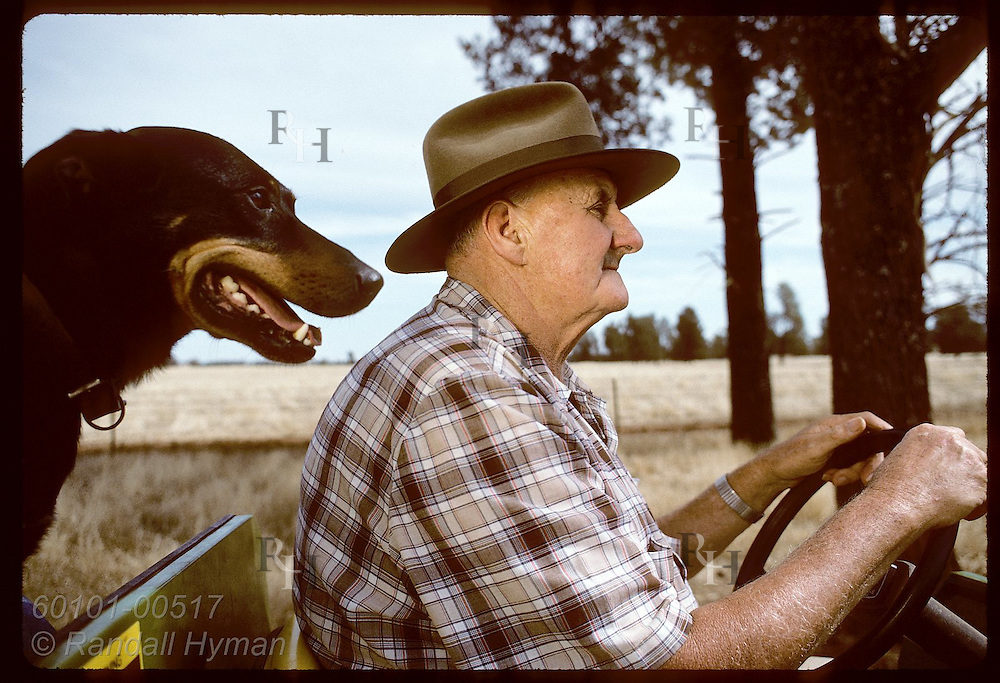 Farmer Jack Veitch drives all-terrain vehicle as dog, Dan, pants over his shoulder; Coolamon, NSW Australia