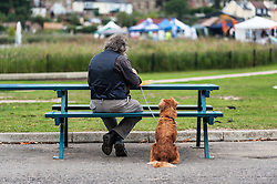 A dog sitting next to his owner.