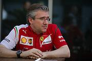 November 21-23, 2014 : Abu Dhabi Grand Prix, Pat Fry