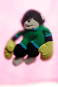 jumping monkey cuddly baby toy