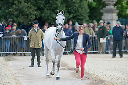 Harris Flora, (GBR), Amazing VIII<br /> First Horse Inspection - Mitsubishi Motors Badminton Horse Trials <br /> Badminton 2015