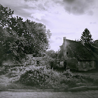 A monochromatic image of an old abandoned mansion /building, hidden among wild nature, under a cloudy sky.