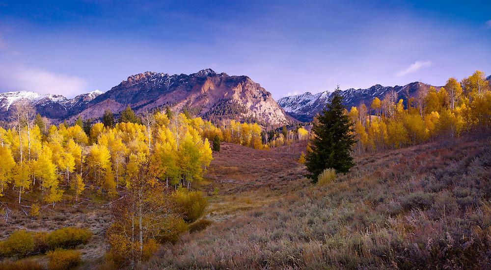 Fall in the Boulder Mountains, near Sun Valley, Idaho