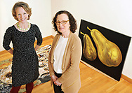 """Juliet Feibel, executive director of ArtsWorcester, left and Honee Hess, Worcester Center for Crafts executive director, have collaborated on the upcoming exhibition """"Now!: New Work, New Artists"""" on Thursday, March 10, 2016.   T&G Staff/Christine Hochkeppel"""