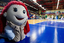 Mascot during basketball match between National teams of Slovenia and Lithuania in First Round of U20 Men European Championship Slovenia 2012, on July 14, 2012 in Domzale, Slovenia. Slovenia defeated Lithuania 87-81. (Photo by Vid Ponikvar / Sportida.com)
