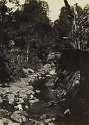 Landschap, vermoedelijk op Oost-Java