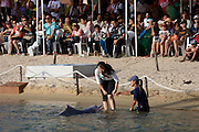 Sentosa Island. Underwater World Dolphin lagoon. Afternoon dolphin show. Visitors touching dolphins.