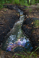 Tramutola, 13/06/2015: bolla di Tramutola, sorgente in contrada Caolo contenente petrolio, zolfo, gas e acqua