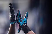 January 17, 2016: Carolina Panthers vs Seattle Seahawks. Panthers players high five before the game