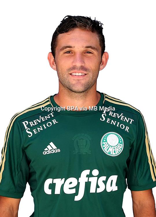 Brazilian Football League Serie A / <br /> ( Sociedade Esportiva Palmeiras ) - <br /> Agustin Lionel Allione