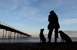 (c) Licensed to London News Pictures. 04/12/2015<br /> Saltburn. UK. <br /> Dave Whyman from North Skelton stands with his two labradors next to the pier on the beach at Saltburn.<br /> Photo credit : Ian Forsyth/LNP