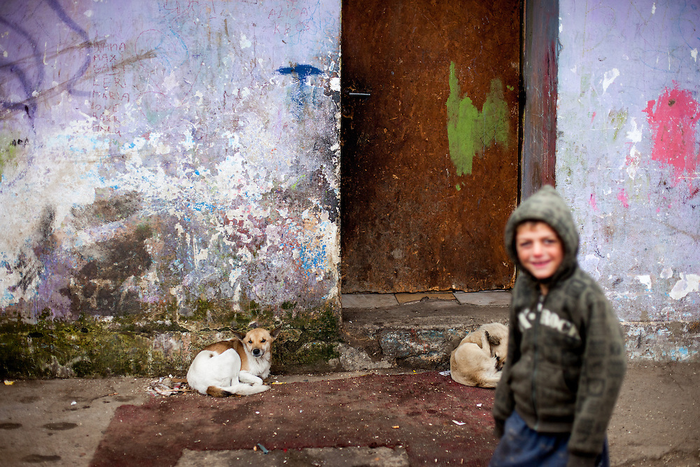 "Boy and two dogs in front of a house in the middle of the Roma settlement located in ""Budulovskej Street"" in Moldava nad Bodvou, Eastern Slovakia about 30 km from Kosice."