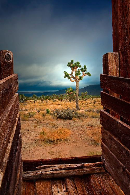 Abandoned cattle chute located in the Ivanpah Range of the Mojave National Preserve.